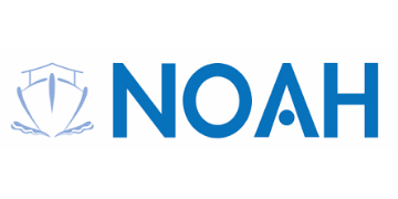 Noah Enterprise logo